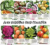Alien Vegetable Seed Collection (8 Individual Seed Packets) Non-GMO Seeds by Seed Needs Photo, bestseller 2021-2020 new, best price $12.50 review