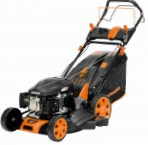 self-propelled lawn mower Daewoo Power Products DLM 5000 SV Photo, description