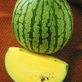Watermelon Yellow Doll - Hybrid Great Garden Vegetable By Seed Kingdom BULK 100 Seeds Photo, bestseller 2018-2017 new, best price $19.95 review