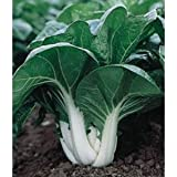 *Seeds and Things Bok Choy Pak Choi 200 seeds -Easy Grow Photo, bestseller 2018-2017 new, best price $1.03 review