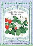 Strawberry, Alpine, Mignonette Photo, bestseller 2018-2017 new, best price $3.19 review