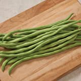David's Garden Seeds Bean Pole Fortex OS34A (Green) 50 Open Pollinated Seeds Photo, bestseller 2018-2017 new, best price $8.85 review