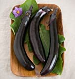 David's Garden Seeds Eggplant Orient Express D354QWS (Purple) 25 Hybrid Seeds Photo, bestseller 2018-2017 new, best price $8.45 review