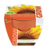 Buzzy 95519 Sunflower Mini Grow Pot Photo, bestseller 2018-2017 new, best price $9.50 review