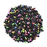 CNZ Aquarium Gravel Black & Flourescent Mix for Plant Aquariums, Landscaping, Home Decor, 0.25