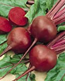 Chioggia Beet Seeds, 100+ Premium Heirloom Seeds, ON SALE!, (Isla's Garden Seeds), Non Gmo Organic, 90% Germination, Survival Seeds Photo, bestseller 2018-2017 new, best price $5.39 review