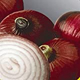 Everwilde Farms - 1/4 Lb Red Burgundy Onion Seeds - Gold Vault Photo, bestseller 2018-2017 new, best price $16.80 review