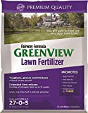 GreenView Fairway Formula Lawn Fertilizer - 16.5 lb bag, Covers 5,000 Sq. Ft. Photo, bestseller 2019-2018 new, best price $34.99 review