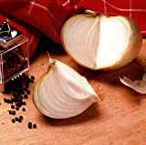 Sweet Granex Onion 80 Seeds as Grown in Vidalia Georgia Photo, bestseller 2018-2017 new, best price $1.95 review