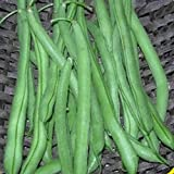 Everwilde Farms - 1 Lb Blue Lake Bush Green Bean Seeds - Gold Vault Photo, bestseller 2017-2016 new, best price $4.80 review