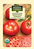 Seeds of Change 06074 Certified Organic Tomato, Beefsteak Photo, bestseller 2018-2017 new, best price $3.49 review