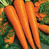 100 Seeds of Imperator 58 Carrots - Pelleted - Has a Very Sweet and Tender Flavor Photo, bestseller 2018-2017 new, best price $14.89 review