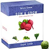 Grow 4 of the Healthiest Vegetables From Seed - Brussel Sprouts, Kale, Beets & Leeks. Superfood Sprout Kit W/ Soil, Organic Planters. Outdoor Garden Gift for Beginner Gardeners, Vegans, Vegetarians Photo, bestseller 2018-2017 new, best price $25.99 review