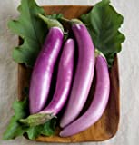 David's Garden Seeds Eggplant Orient Charm D2201PLY (Purple) 25 Hybrid Seeds Photo, bestseller 2018-2017 new, best price $8.45 review