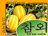 Korean Melon Seeds - 25 Seed Count Photo, bestseller 2018-2017 new, best price  review