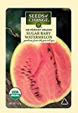 Seeds of Change 01524 Certified Organic Watermelon, Sugar Baby Photo, bestseller 2018-2017 new, best price $3.49 review