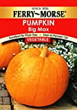 Ferry-Morse Pumpkin - Big Max Seeds Photo, bestseller 2018-2017 new, best price $5.31 review