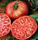 Organic Pink Ponderosa Heirloom Tomato Seeds - Large Tomato - One of the Most Delicious Tomatoes for Home Growing, Non GMO - Neonicotinoid-Free. Photo, bestseller 2018-2017 new, best price $8.99 review