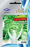 Chinese Cabbage (4270 Seeds) Seeds (Light Weight) - 1 Package From Chai Tai, Thailand Photo, bestseller 2018-2017 new, best price $5.87 review