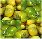 20 GREEN GRAPE Tomato Seeds HEIRLOOM ~ TASTY CLUSTERS Juicy and flavor packed !! Photo, bestseller 2018-2017 new, best price $5.95 review