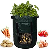 Kadaon 2-Pack 7 Gallon Garden Potato Grow Bag Vegetables Planter Bags with Handles and Access Flap for Potato, Carrot & Onion Photo, bestseller 2019-2018 new, best price $39.99 review
