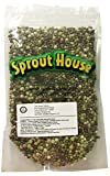 The Sprout House Certified Organic Non-gmo Sprouting Seeds Holly's Mix - Mung, Adzuki, Green Pea, Red Lentil, French Lentil, Green Lentil 1 Pound Photo, bestseller 2019-2018 new, best price $14.30 review
