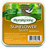 Morning Song 11454 Sunflower Suet Wild Bird Food, 9-Ounce Photo, bestseller 2018-2017 new, best price $3.86 review