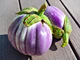 30+ ORGANICALLY GROWN Italian Rotonda Bianca Sfumata di Rosa Eggplant Seeds, Heirloom NON-GMO, Meaty, Purple and White, Not Bitter and Super Delicious, From USA Photo, bestseller 2018-2017 new, best price $2.45 review