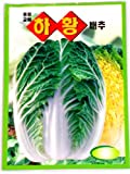 Cabbge Seeds Korean. 2 Pack(4grams-each) Photo, bestseller 2017-2016 new, best price $4.50 review