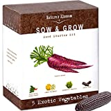 Exotic Vegetables Growing Kit - 5 Unique Plants to Grow From Seed: Purple Carrots, Blue Corn, Yellow Cucumber, Rainbow Chard & Broccoli. Garden Gift for Children - Fun Gardening Set For Boys & Girls Photo, bestseller 2018-2017 new, best price $29.99 review