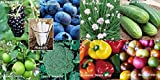 Fruit Veggie Combo Pack Chives, Blackberry, Blueberry, Pepper, Tomato, Broccoli, Cucumber (Organic) 1095+ Seeds 650327337350 + 8 Free Plant Markers Photo, bestseller 2017-2016 new, best price $6.29 review
