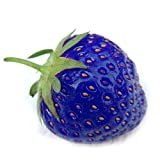 Loveble 500Pcs Blue Strawberry Rare Fruit Seeds Bonsai Edible Climbing Plant Photo, bestseller 2017-2016 new, best price $3.62 review