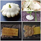 White Patty Pan Courgette ~10 Top Quality Seeds - Amazing Variety! Photo, bestseller 2018-2017 new, best price $7.10 review