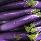 Everwilde Farms - 250 Long Purple Eggplant Seeds - Gold Vault Jumbo Seed Packet Photo, bestseller 2018-2017 new, best price $2.50 review