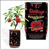 Moruga Scorpion Pepper - Grow Your Own Hottest Pepper in the World! - 2,000,000SHU 3oz/85gr Photo, bestseller 2017-2016 new, best price $8.00 review
