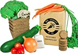 Mr. Sprout & Co Organic Vegetable Garden Kit - Vegetable Garden Seed Starter Kit For Kids, Adults Or Gift Idea- Includes Seeds For Cherry Tomatoes, Broccoli, Onions, Carrots, & Zucchini Photo, bestseller 2018-2017 new, best price $32.95 review