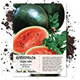 Package of 100 Seeds, Sugar Baby Watermelon (Citrullus lanatus) Seeds by Seed Needs Photo, bestseller 2019-2018 new, best price $3.85 review
