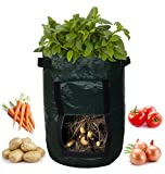 Garden Planter Bag (2-pack) – Grow Vegetables: Potato, Carrot, Tomato, & Onion - Plant Tub with Access Flap for Harvesting - Eco-Friendly - Heavy Duty & Durable Bags Photo, bestseller 2018-2017 new, best price $16.99 review