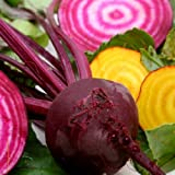 BEETS - Gourmet MIX of Beet Seeds ► ORGANIC NON-GMO Red & Yellow Beet Seeds (100+ Seeds) ◄ by PowerGrow Systems Photo, bestseller 2019-2018 new, best price $1.97 review
