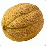 Everwilde Farms - 50 Honey Rock Melon Seeds - Gold Vault Jumbo Seed Packet Photo, bestseller 2019-2018 new, best price $2.50 review