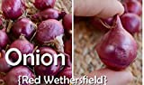 1/2 Lb Onion Sets - Wethersfield Red, Organic ,Heirloom - Non-GMO Photo, bestseller 2018-2017 new, best price $5.95 review