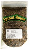 The Sprout House Veggie Queen Salad Mix Certified Organic Non-gmo Sprouting Seeds - Red Clover, Red Lentil, French Lentil, Daikon Radish, Fenugreek 1 Pound Photo, bestseller 2019-2018 new, best price $14.90 review