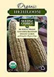 Seeds Of Change 06079 Certified Organic Golden Bantam Corn Photo, bestseller 2019-2018 new, best price $7.15 review