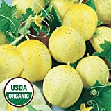 Everwilde Farms - 50 organic Lemon Slicing Cucumber Seeds - Gold Vault Packet Photo, bestseller 2018-2017 new, best price $2.50 review