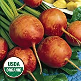 Everwilde Farms - 100 organic Golden Detriot Beet Seeds - Gold Vault Packet Photo, bestseller 2018-2017 new, best price $2.50 review
