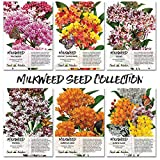 Seed Needs Milkweed Seed Collection (6 Individual Seed Packets) Open Pollinated Seeds Photo, bestseller 2019-2018 new, best price $21.90 review