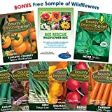 Container Heirloom Vegetable Garden Seeds - 7 Seed Packets + 8 Gardening Guide eBooks, Non-GMO, No Fillers - Bulk Variety Pack of Tomato, Carrot, Lettuce, Radish, Cucumber, Basil, Onion, Squash Photo, bestseller 2018-2017 new, best price $8.95 review