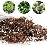 Cactus Succulent Plant Soil Mix - Home Garden Potting Soil for Growing Cacti - Water Saving with Coco Coir Photo, bestseller 2018-2017 new, best price $2.99 review