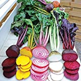 Park Seed Rainbow Mix Beet Seed Tape Photo, bestseller 2018-2017 new, best price $8.95 review