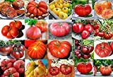 PLEASE READ! THIS IS A MIX!!! 30+ ORGANICALLY GROWN GIANT Tomato Seeds, Mix of 22 Varieties, Heirloom NON-GMO, Brandywine Black, Red, Yellow & Pink, Mr. Stripey, Old German, Black Krim, From USA Photo, bestseller 2018-2017 new, best price $2.65 review